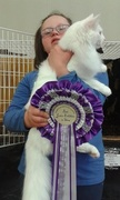 Faith and Kai PN Cat Show 2015