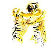 Tiger Fight II