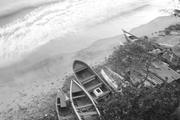 Documentalismo en la Sabana