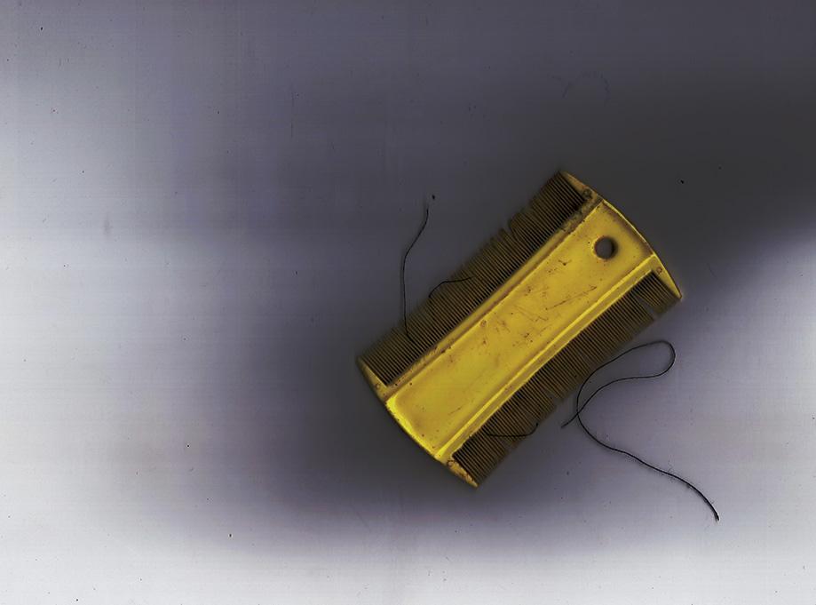 Un detector de mentiras- Gaia Castillo