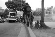 Denuncia - Parada de autobus Plaza las Américas, El Cafetal