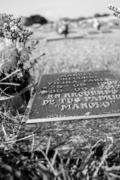 Dia 11 - Una Garantía De Por Vida - Robert Dos Passos V