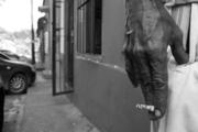 una caminata solitaria