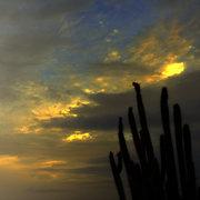 Macanao, anochecer con Yaguarey, Isla de Margarita. Venezuela