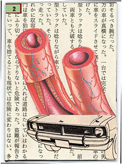 Human Vs Automobile II