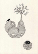 planet nest
