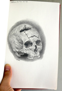 skull study dududu
