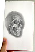 skull study hsrihsrihsri