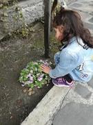 ყვავილების მოფერება