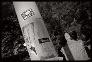 sign of the buffalo