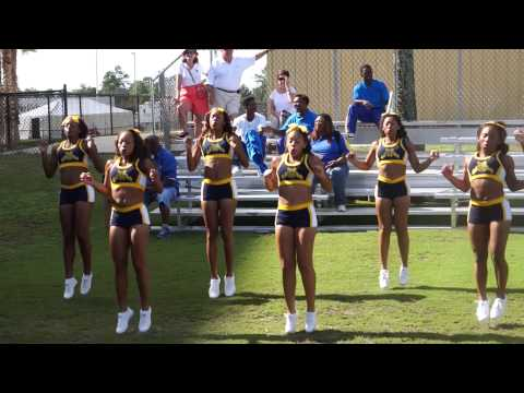 2014 MEAC/SWAC Challenge Review