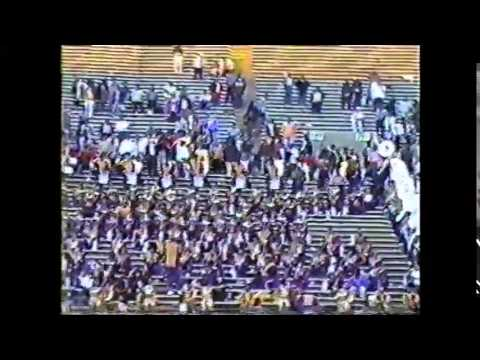 Alcorn 1999 For the Love of You