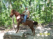 my horse roaney and i at natchez trace