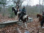 jeffrey and flip @ honey creek(BSF)