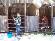 Stalls at Many Cedars