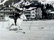 Fritz on white horse