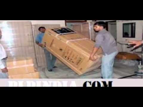 Packers and Movers Noida Expert Service
