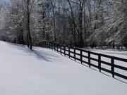 winter 2010-jan 037