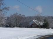 winter 2010-jan 036