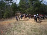 Seven springs ride 3-19-10 (2) 004