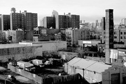 brooklyn-projects-myrtle