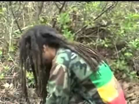 New Reggae! Do You Fullfill The Prophecies? (An Open Letter to Black People)