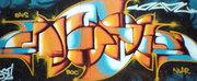 22_damu_reggiani_graffito
