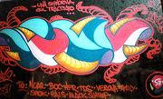 12_damu_reggiani_graffito
