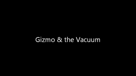 Gizmo and the Vacuum