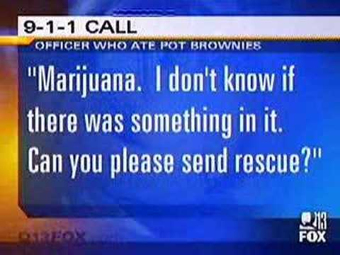 News Anchor Loses It Over Pot Brownie Story!