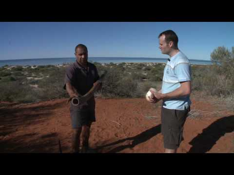 How to play the didgeridoo and conch