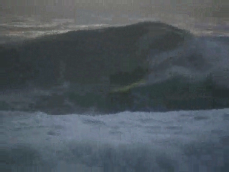 Zef waves
