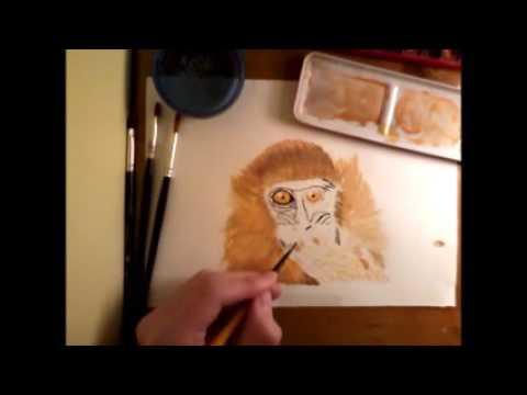 Monkey -Speed Painting