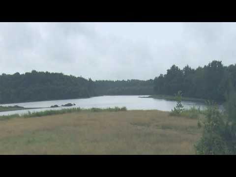 Contes Initiatiques de la Forêt de Brocéliande 4 :  le Lac