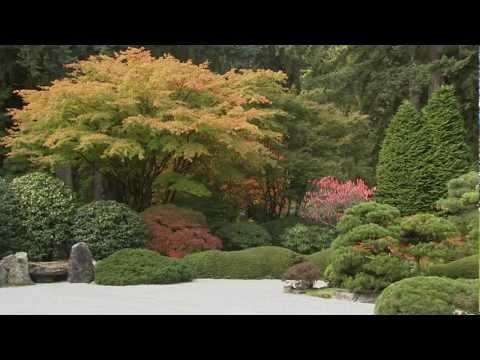 ♫✿ Vivre Paysage Zen Garden ♫✿