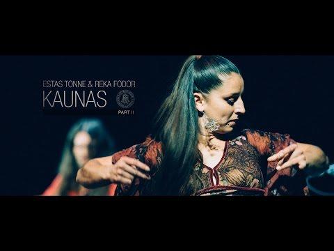 Estas Tonne & Reka Fodor @ VDU Kaunas 2014 [HD] Part II