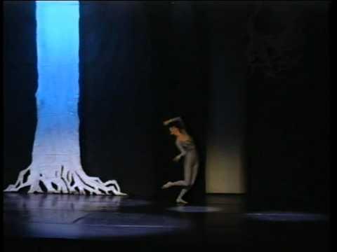 Danse Le Regard de l'arbre 1989 - Extrait