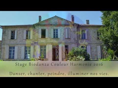 Stage Biodanza Couleur Harmonie 2016