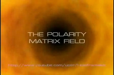 THE POLARITY MATRIX FIELD