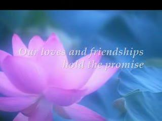 Journeys of Love & Friendship