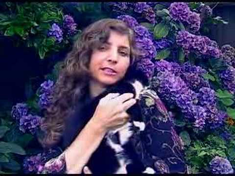 9 Unconditional Love University of Metaphysical Sciences Christine Breese Breeze