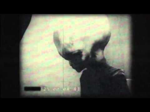 Breaking News: Leaked footage of Alien from Zeta Reticula. UFO crash survivor?