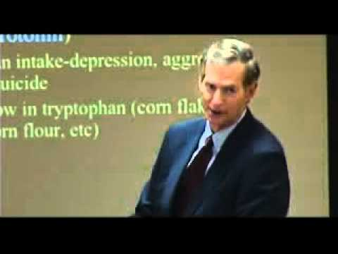 Nutrition and Behavior; Aspartame, MSG, Excitotoxins - Dr.Russell Blaylock