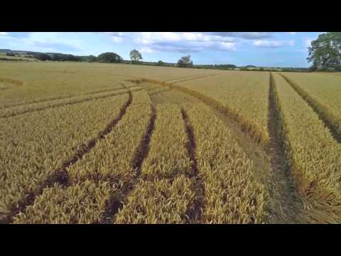 Cherington, Gloucester Crop Circle EPIC
