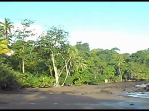 Parc National Corcovado - Tout Costa Rica