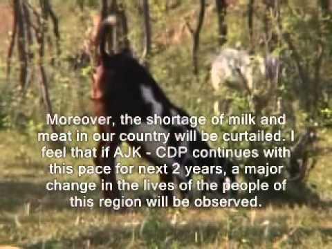Documentary AJK CDP