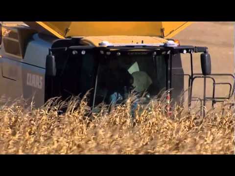 CLAAS LEXION 760 TERRA TRAC  - WORLD RECORDS In Corn