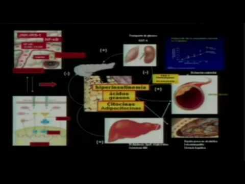 Síndrome Metabólico - 1