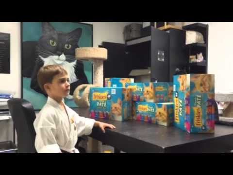 Tiny Tiger Service Project for Happy Tails