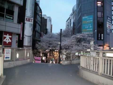 祝福東京渋谷オーブ写真